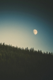 blue-forest-indie-moon-favim-com-2680082